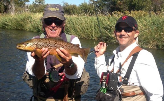 sachs_brown_trout_2